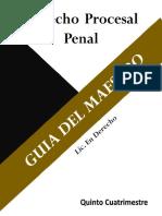 MAESTRO DERECHO PROCESAL PENAL