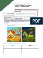 GUÍA N°4 - CIENCIAS - 1ERO - PRIORIZADA