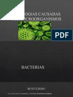 PATOLOGIAS CAUSADAS POR MICROORGANISMOS (3)