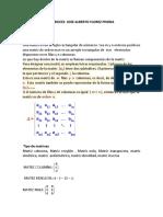 Algebra y Programación Lineal. Teoria Sobre Matrices