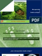 Biocapacidad y huella ecológica