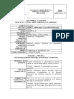 Formato Guía Práctica Estudiantes OPTATIVA II