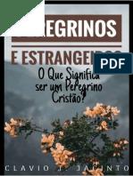 Peregrinos e Estrangeiros