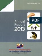 PADMALIFE-Annual Report_2013