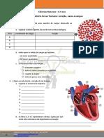 7CN6 - Sistema circulatório do ser humano - coração, vasos e sangue