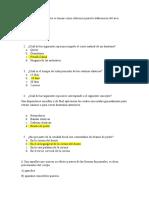 reactivos grupo 3 (1)