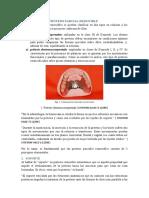 Biomecánica en PPR