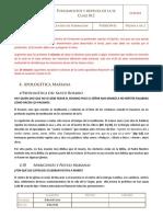 Clase 012 Apologtica Del Rosario Fiestas y Apariciones Marianas