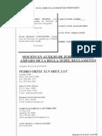 Moción en Auxilio de Jurisdicción (Irizarry v Roldan)