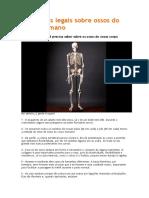 Dez coisas legais sobre ossos do corpo humano