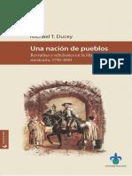Ducey Una nación de pueblos revueltas y rebeliones en la Huasteca