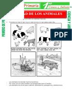 utilidad-de-los-animales-para-Primero-de-Primaria