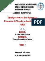 CLASIFICACIÓN DE LOS DIFERENTES TRAUMAS DEL TRACTO UROGENITAL SEGÚN LA AAST