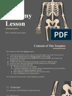 Anatomy Skeletal
