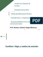 1. DRA. ROXANA JIMENEZ - Principios, Jurisdicción, Competencia