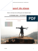 Rapport de Stage. ESEDA. Amélie Vernay. 2020