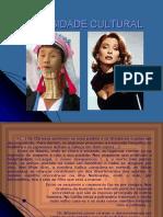 dr1 Atitudes perante a diversidade cultural