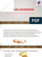 1.1 AMINOGLUCOSIDOS
