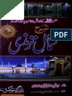 Sharah Shamail´e Tirmizi [Urdu]