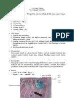 kimia laporan