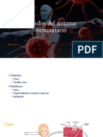 3. Tejidos del sistema inmunitario