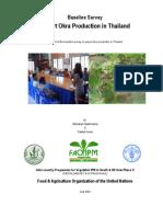Export-Okra-Thai-Baseline-Report