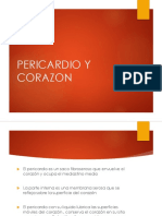 PERICARDIO Y CORAZON1