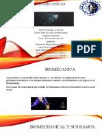 biomecanicas