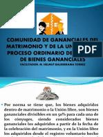 EXPOSICION CÓDIGO DE LAS FAMILIAS Y DEL PROCESO FAMILIAR1