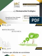 Reforestación y Restauración Ecológica Laguna de Socha