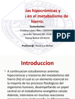 Anemias hipocromicas y trastornos en el metabolismo de