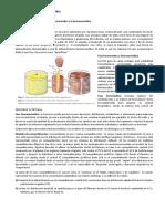 ADIP GRIMALDIS Anestesia total intravenosa de la farmacéutica a la farmacocinética