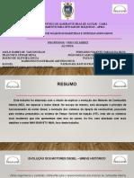 Apresentação Gelmirez MAQ11 (1)