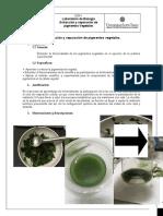 Laboratorio de Extracción y separación de pigmentos vegetales