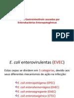 aula 7 - Infecções gastrointestinais causadas por Enterobactérias - Ecoli