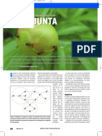 linux-magazine-marabunta
