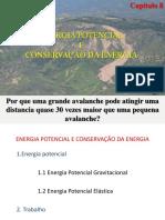 Energia Potencial e Conservacao Da Energia