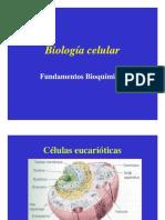 tercera, cuarta y quinta  clase de Biología [Modo de compatibilidad] (2)