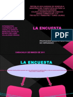 DIAPOSITIVAS DE LA ENCUESTA VIGY .