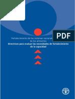 DIRECTRICES PRA EVALUAR LAS NECESIDADES DE FORTALECIMIENTO DE LA CAPACIDAD