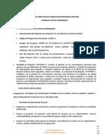Gfpi-f-019 Guia Bsl Mbz 2021