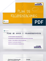 Plan de Recomendaciones