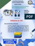 COMPONENTES Y PRINCIPIOS COSO 2013