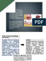 clasificacion TNM Y MARCADORES