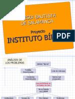 Proyecto IBS
