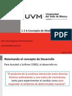 1.1_b_Concepto_de_Madurez