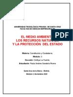 INFORME - EL MEDIO AMBIENTE, LOS RECURSOS NATURALES Y LA PROTECCIÓN DEL ESTADO EN BOLIVIA