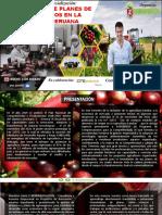 BROCHURE - CURSO PLANES DE AGRONEGOCIOS