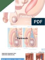 Patología Escrotal Diaps
