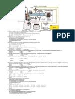 Inyección electrónica gasolina